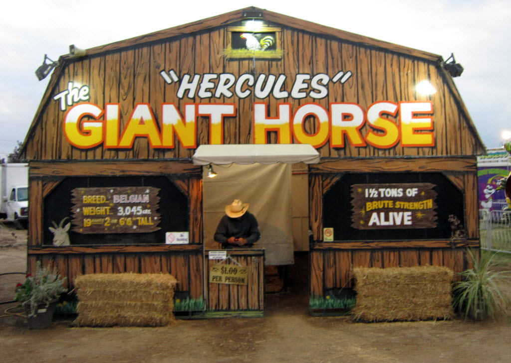 6161625 bytes; 3780 x 2694; Southern California Fair: It costs $1 to see Hercules, a 3.5-ton horse.
